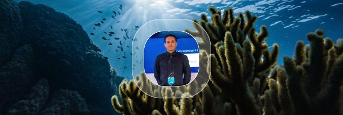 Conferencia: El tiburón blanco en México
